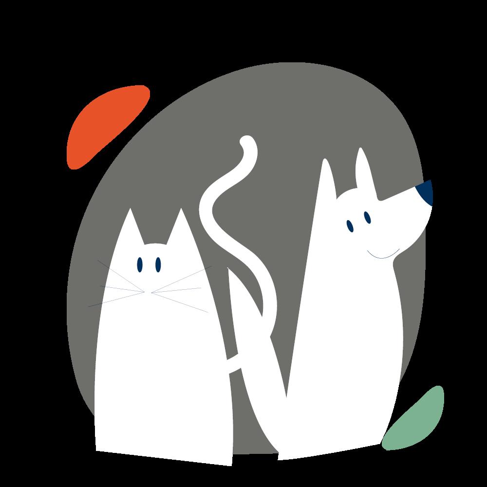 dessin chat et chien